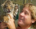 In memoria lui Steve Irwin