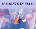 Momente In Viata
